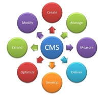 cms website security