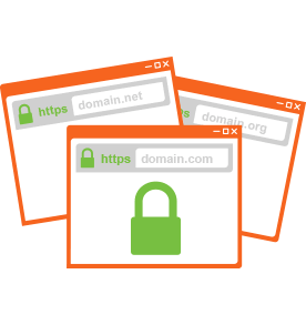 Multi Domain SAN SSL Type Image